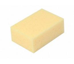 Sponge - Dense