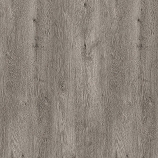 Syberian Oak